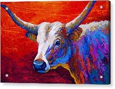 Sunset Ablaze Acrylic Print by Marion Rose