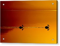 Sunset Cruising Acrylic Print by Laurie Search