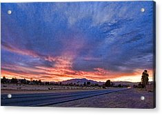 Sunset In The Desert Acrylic Print by Ches Black