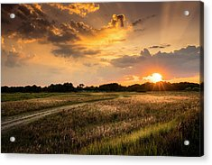 Sunset Meadow Acrylic Print by Marvin Spates