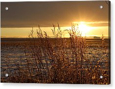 Sunset On Field Acrylic Print by Christy Patino