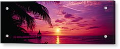 Sunset, Palm Trees, Beach, Water Acrylic Print by Panoramic Images