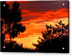 Sunset Sky Acrylic Print by Duke Brito