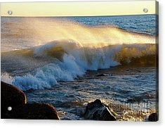 Superior Liquid Gold Acrylic Print by Sandra Updyke