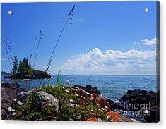 Superior Summer Day Acrylic Print by Sandra Updyke
