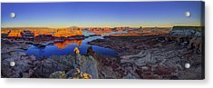 Surreal Alstrom Acrylic Print by Chad Dutson