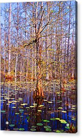 Swamp Tree Acrylic Print by Susanne Van Hulst