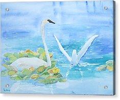 Swans Acrylic Print by Christine Lathrop