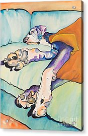 Sweet Sleep Acrylic Print by Pat Saunders-White