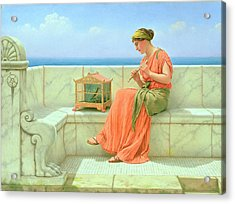 Sweet Sounds Acrylic Print by John William Godward