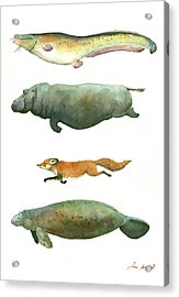 Swimming Animals Acrylic Print by Juan Bosco
