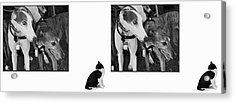 Sworn Enemies - Gently Cross Your Eyes And Focus On The Middle Image Acrylic Print by Brian Wallace