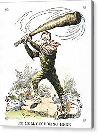 T. Roosevelt Cartoon, 1904 Acrylic Print by Granger