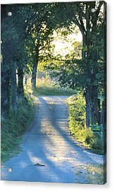 Take Me Home Acrylic Print by Jan Amiss Photography