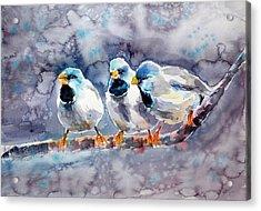 Talking Birds Acrylic Print by Kovacs Anna Brigitta