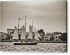Tall Ship Schooner Pride Off The Historic Charleston Battery Acrylic Print by Dustin K Ryan