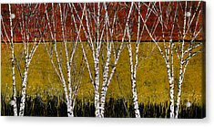 Tante Betulle Acrylic Print by Guido Borelli