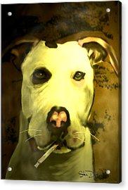 Tar Pit Acrylic Print by Stevn Dutton