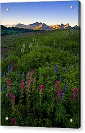 Tatoosh Dawn Acrylic Print by Mike  Dawson