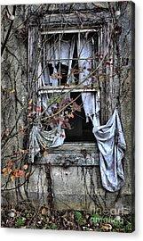 Tattered Curtain Fall '09 No.2 Acrylic Print by Sari Sauls