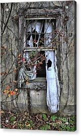 Tattered Curtain Fall '09 No.3 Acrylic Print by Sari Sauls