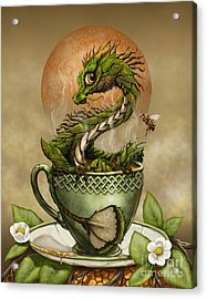 Tea Dragon Acrylic Print by Stanley Morrison