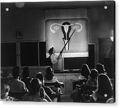 Teacher Points To A Diagram Of Female Acrylic Print by Everett