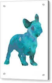 Teal Frenchie Abstract Painting Acrylic Print by Joanna Szmerdt