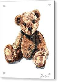 Teddy Bear Brown Bear Stuffed Animal Vintage Toy Steiff Acrylic Print by Laura Row
