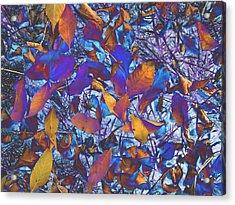 Textured Blue Acrylic Print by Beth Akerman