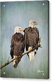 Textured Eagles Acrylic Print by Jeff Swanson