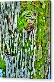 Textures. The Crying Tree Acrylic Print by Andy Za