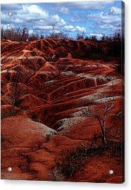 The Badlands Acrylic Print by Cabral Stock