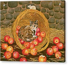 The Basket Mouse Acrylic Print by Ditz