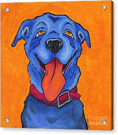 The Blue Dog Of Sandestin Acrylic Print by Robin Wiesneth