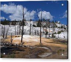 The Bluest Sky Acrylic Print by Debbie Hall