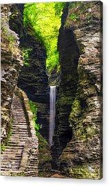 The Central Cascade Acrylic Print by Mark Papke