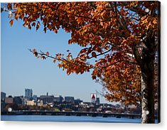 The Citgo Sign Through The Trees Boston Ma Charles River 2 Acrylic Print by Toby McGuire