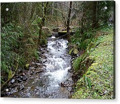 The Creek Acrylic Print by Laurie Kidd