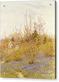 The Cuckoo Acrylic Print by Helen Allingham