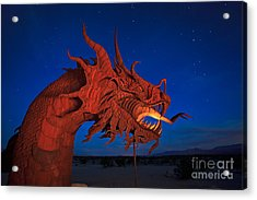 The Desert Serpent Under A Starry Night Acrylic Print by Sam Antonio Photography
