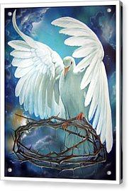 The Dove Acrylic Print by Larry Cole