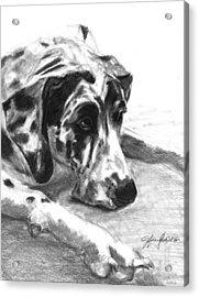 The Duke Acrylic Print by J Ferwerda
