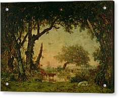 The Edge Of The Forest At Fontainebleau Acrylic Print by Theodore Rousseau