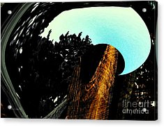 The Environment Acrylic Print by Gerlinde Keating - Keating Associates Inc