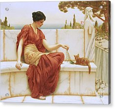 The Favorite Acrylic Print by John William Godward