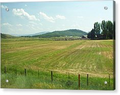 The Fields Of Summer Acrylic Print by Remegio Onia