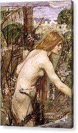 The Flower Picker  Acrylic Print by John William Waterhouse