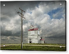 The Grain Elevator In Dog River Acrylic Print by Randall Nyhof