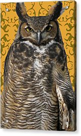 The Great Hored Owl Acrylic Print by Debra     Vatalaro